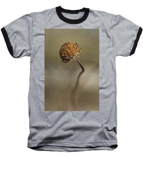 Dried Flower Close-up Baseball T-Shirt