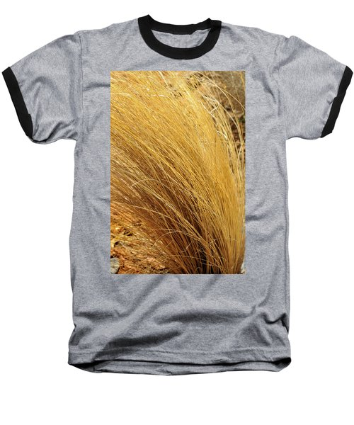 Dried Grass Baseball T-Shirt