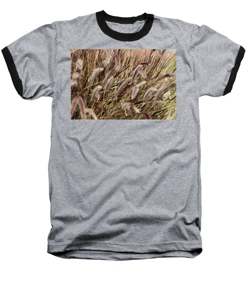 Dried Grasses In Burgundy And Toasted Wheat Baseball T-Shirt