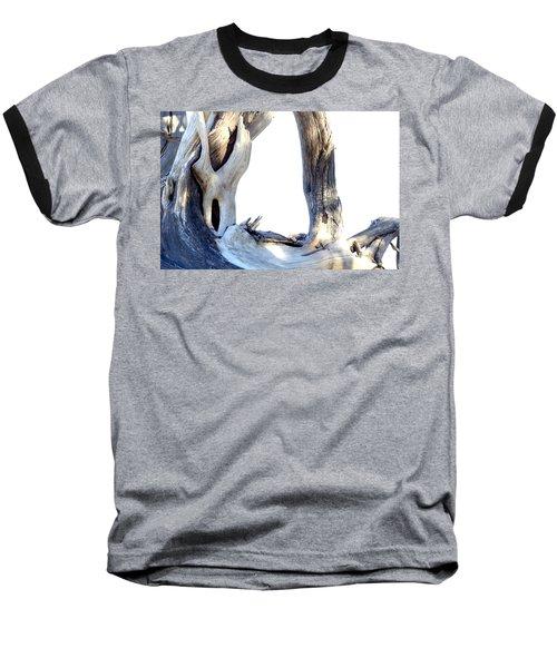 Driftwood Baseball T-Shirt