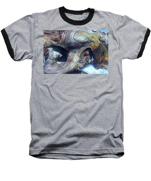 Driftwood Swirls Baseball T-Shirt by Todd Breitling