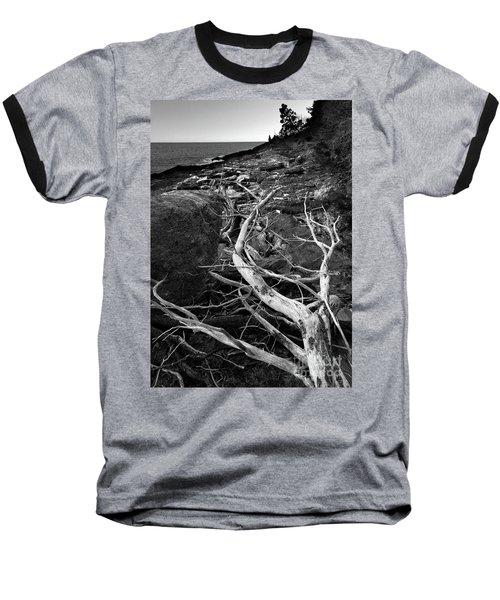 Driftwood Tree, La Verna Preserve, Bristol, Maine  -20999-30003 Baseball T-Shirt