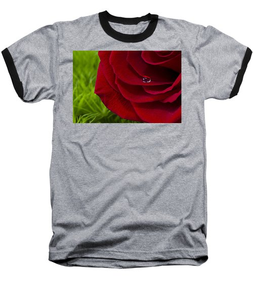 Drop On A Rose Baseball T-Shirt by Marlo Horne