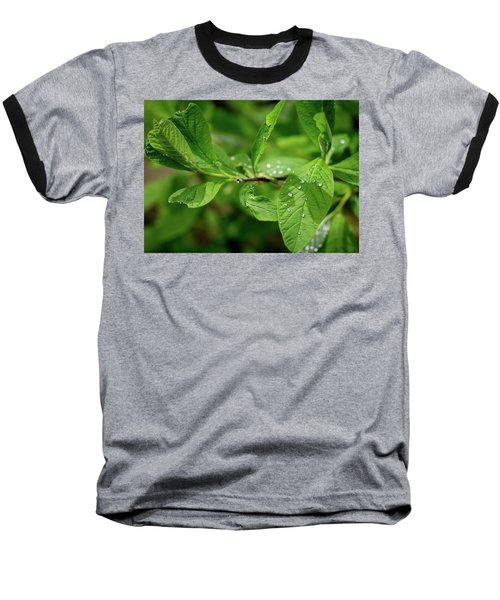 Droplets On Spring Leaves Baseball T-Shirt