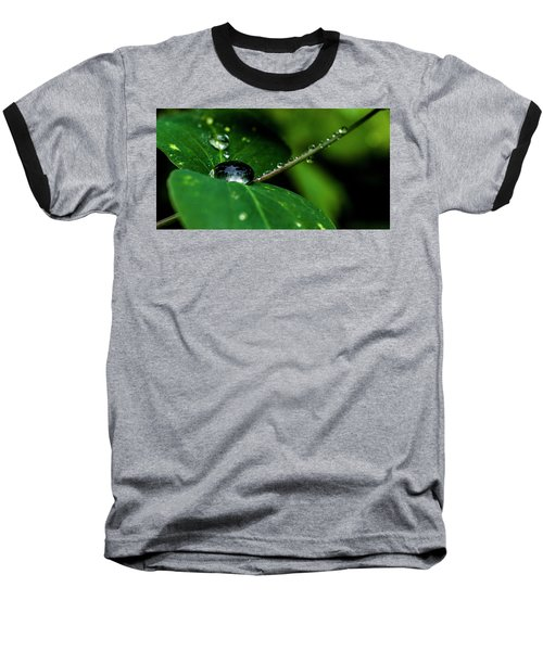 Baseball T-Shirt featuring the photograph Droplets On Stem And Leaves by Darcy Michaelchuk