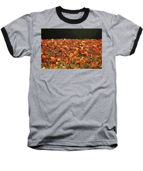 Baseball T-Shirt featuring the photograph Dry Maple Leaves Covering The Ground by Emanuel Tanjala