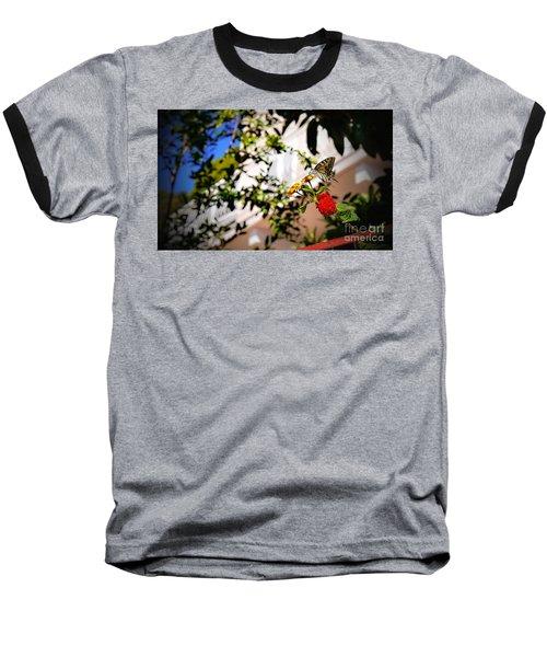 Dubrovniks Butterfly Baseball T-Shirt