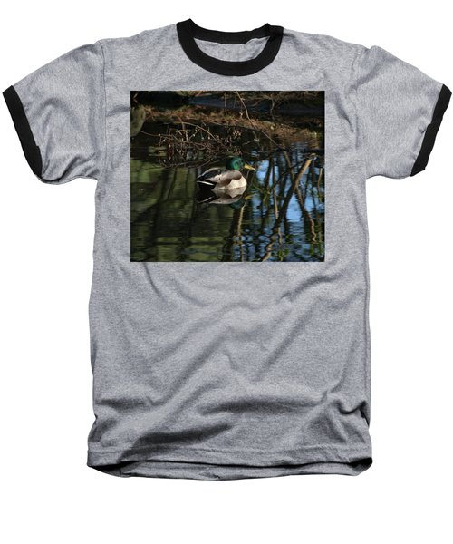 Duck Resting Baseball T-Shirt