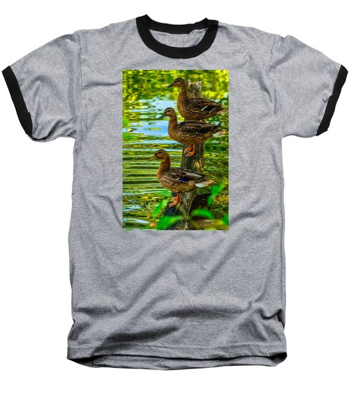 Ducks On A Log 3 Baseball T-Shirt by Brian Stevens
