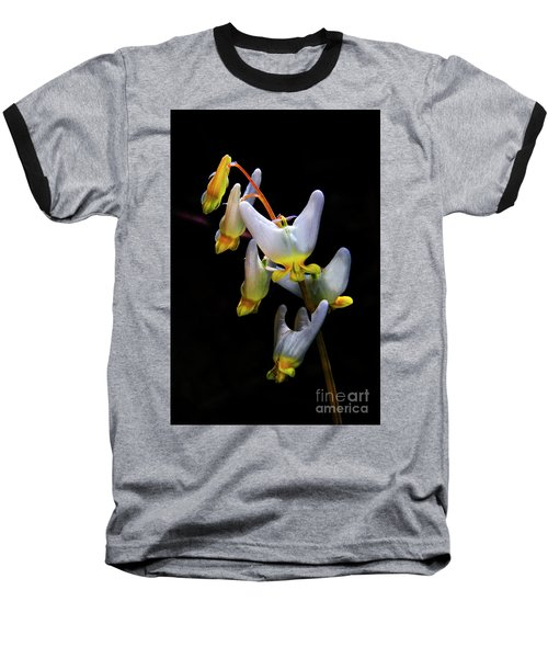 Dutchmans Breeches Baseball T-Shirt by Barbara Bowen
