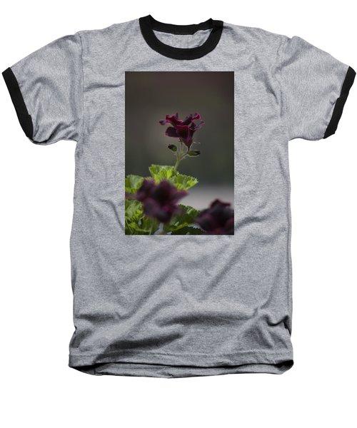 Dying Embers Baseball T-Shirt by Morris  McClung