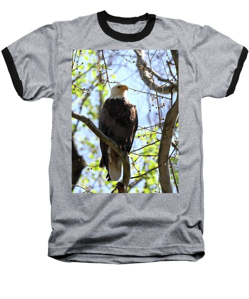 Eagle 1 Baseball T-Shirt