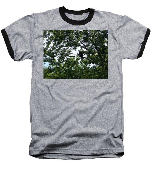 Eagle At Codorus Baseball T-Shirt by Donald C Morgan
