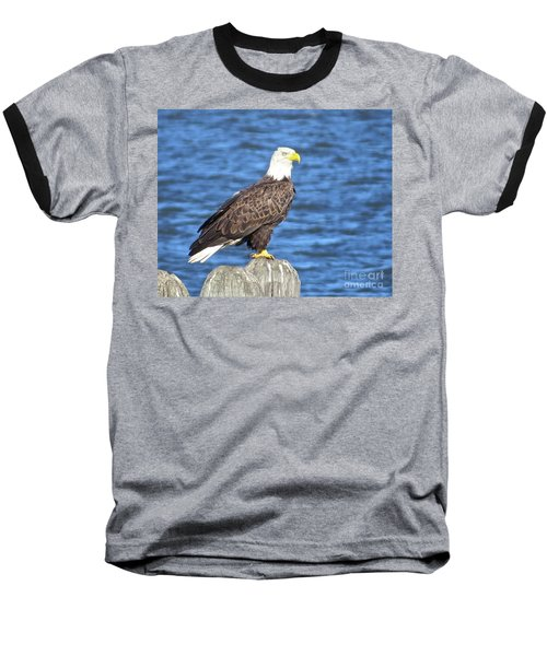 Eagle At East Point  Baseball T-Shirt by Nancy Patterson