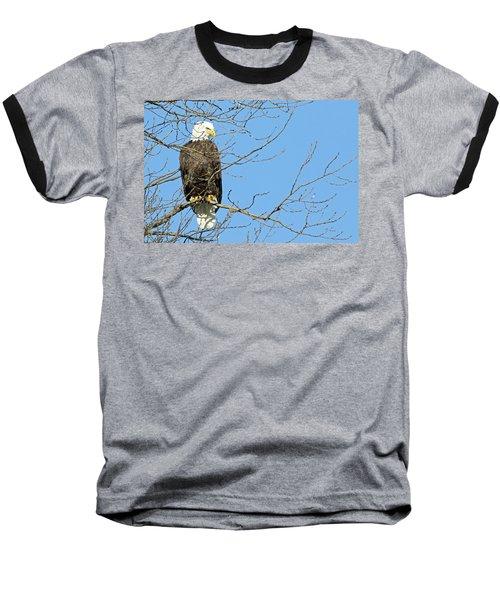 Eagle Baseball T-Shirt by Brook Burling