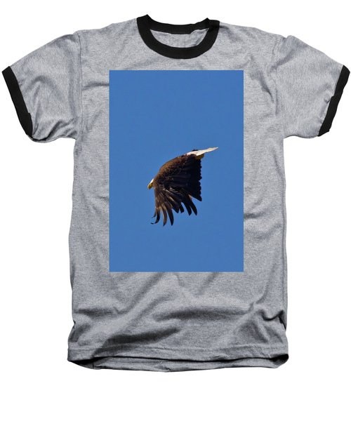 Baseball T-Shirt featuring the photograph Eagle Dive by Linda Unger