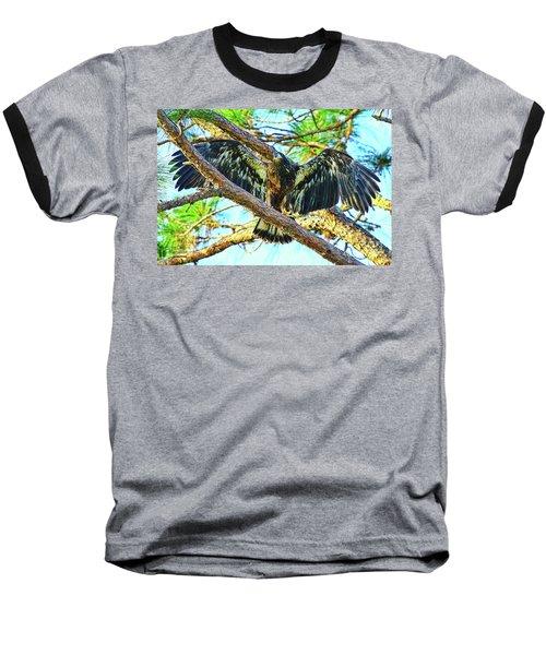 Baseball T-Shirt featuring the photograph Eagle Fledgling II 2017 by Deborah Benoit