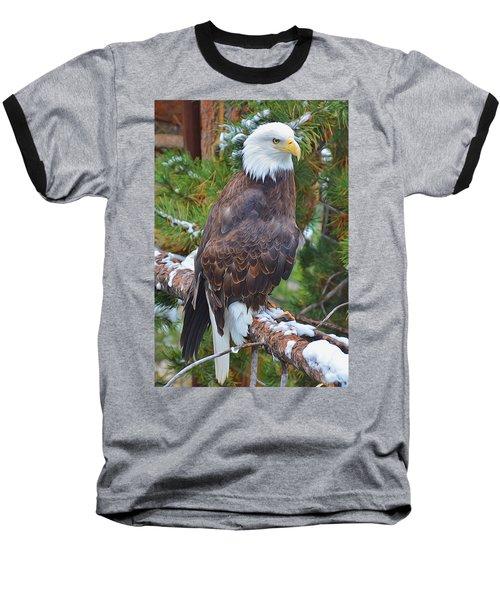 Eagle Glory Baseball T-Shirt