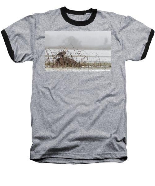 Eagle Hunts For Coots And Ducks Baseball T-Shirt