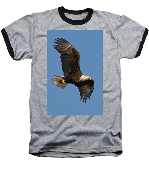 Eagle In Sunlight Baseball T-Shirt