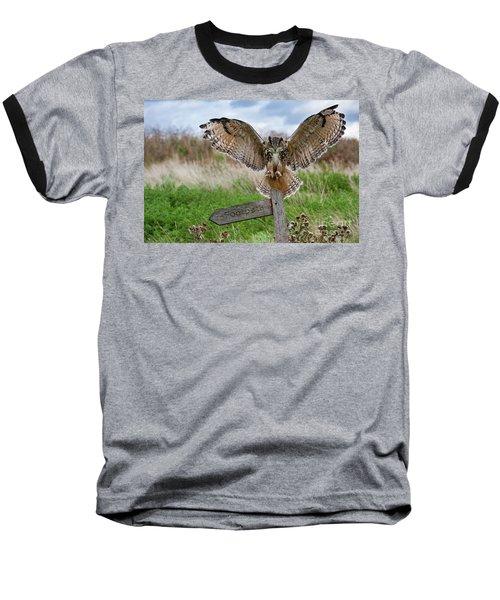 Eagle Owl On Signpost Baseball T-Shirt