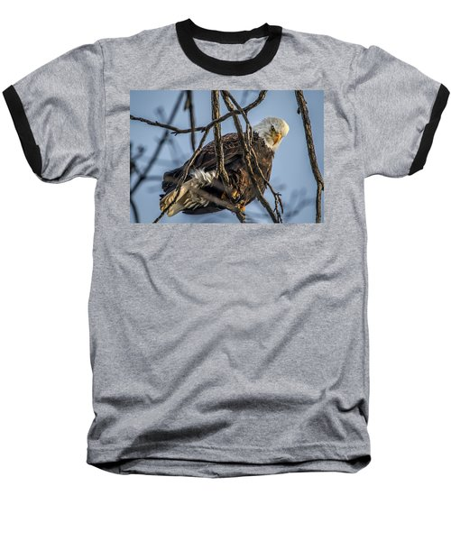 Eagle Power Baseball T-Shirt by Ray Congrove