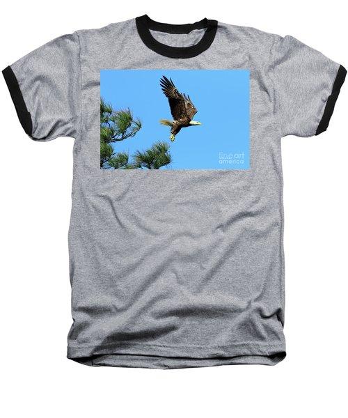 Baseball T-Shirt featuring the photograph Eagle Series 1 2017 by Deborah Benoit