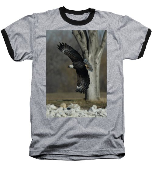 Eagle Soaring By Tree Baseball T-Shirt