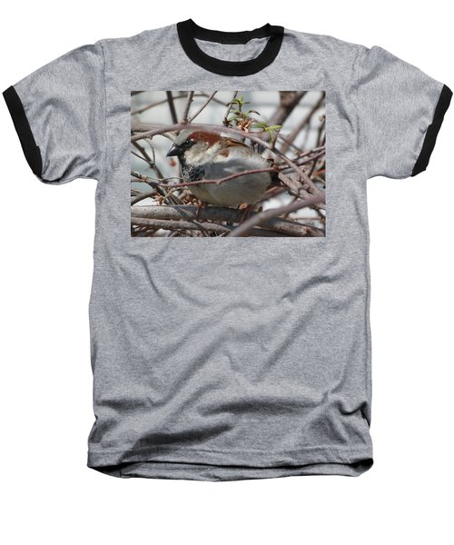Early Bird Baseball T-Shirt