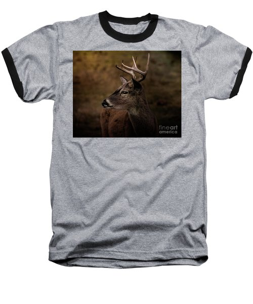 Early Buck Baseball T-Shirt by Robert Frederick