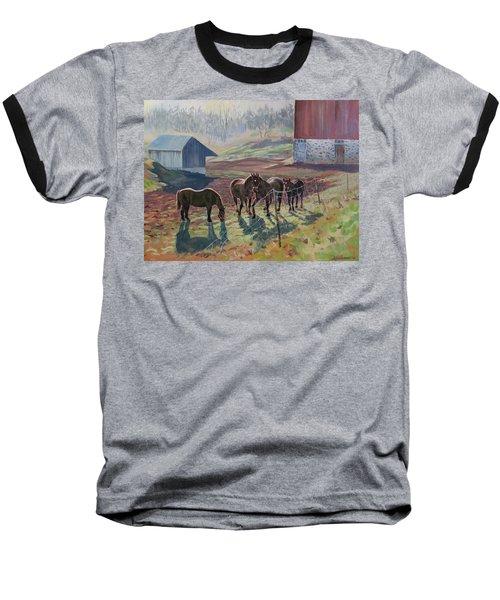 Early December At The Farm Baseball T-Shirt by David Gilmore