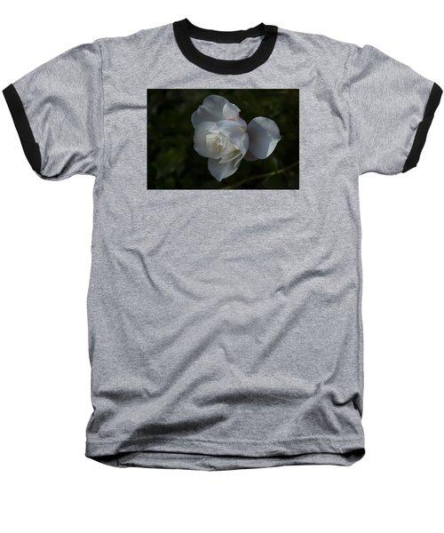 Early Morning Rose Baseball T-Shirt by Dan Hefle