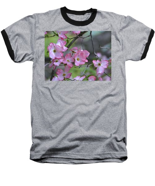 Early Spring Color Baseball T-Shirt by Kathy Eickenberg