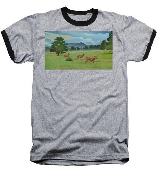 Early Spring Evergreen Baseball T-Shirt