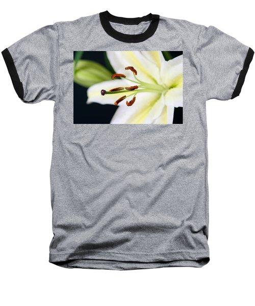Easter Lily 4 Baseball T-Shirt