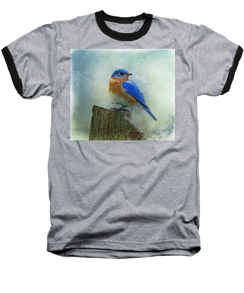 Eastern Bluebird II Baseball T-Shirt