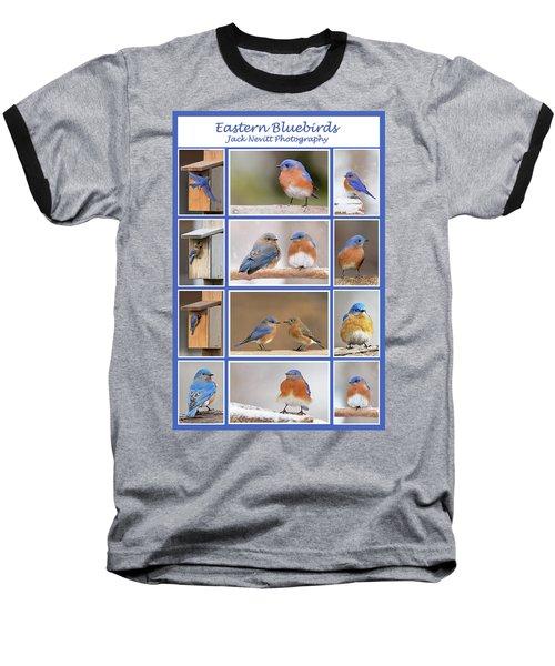 Eastern Bluebird Poster Baseball T-Shirt