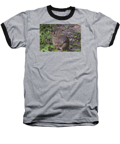 Baseball T-Shirt featuring the photograph Eastern Cottontail 20120624_11a by Tina Hopkins