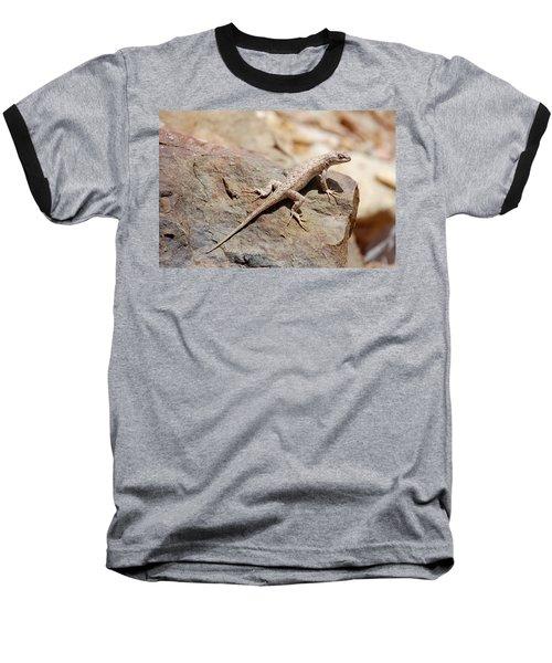Eastern Fence Lizard, Sceloporus Undulatus Baseball T-Shirt