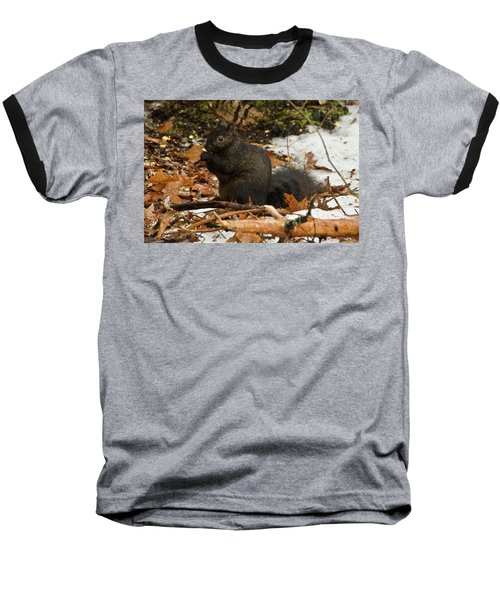 Eastern Gray Squirrel Black Morph Baseball T-Shirt