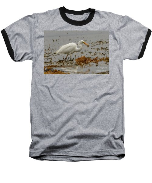 Eastern Great Egret 10 Baseball T-Shirt