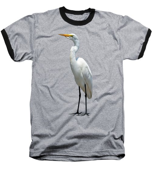 Eastern Great Egret Ardea Alba Modesta Baseball T-Shirt