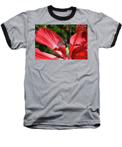 Eastern Tailed Blue Butterfly On Red Flower Baseball T-Shirt by Inspirational Photo Creations Audrey Woods
