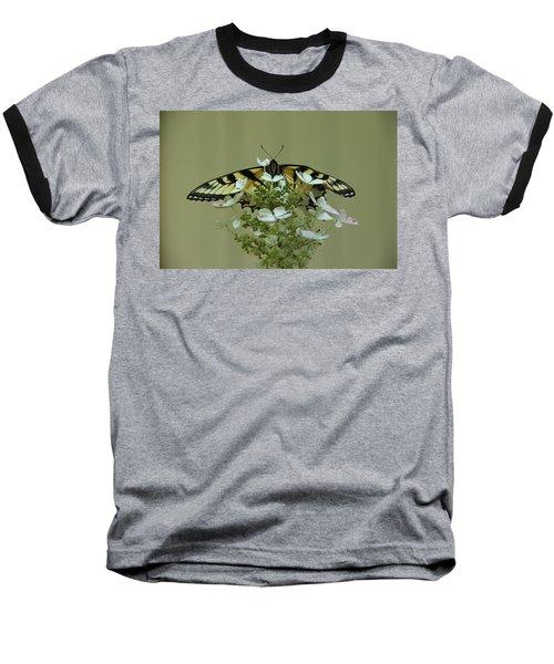 Eastern Tiger Swallowtail Butterfly Baseball T-Shirt