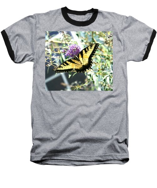 Eastern Tiger Swallowtail Butterfly Baseball T-Shirt