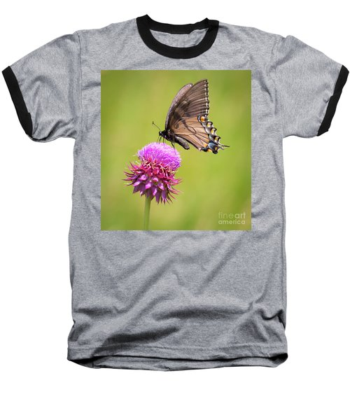 Baseball T-Shirt featuring the photograph Eastern Tiger Swallowtail Dark Form  by Ricky L Jones