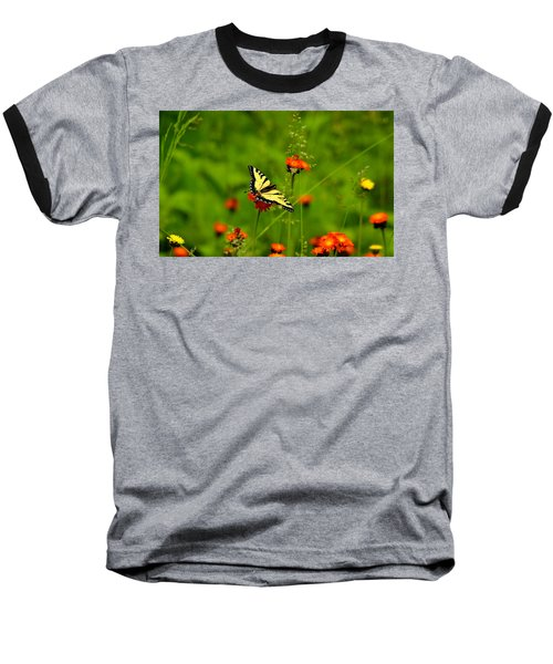 Eastern Tiger Swallowtail  Baseball T-Shirt