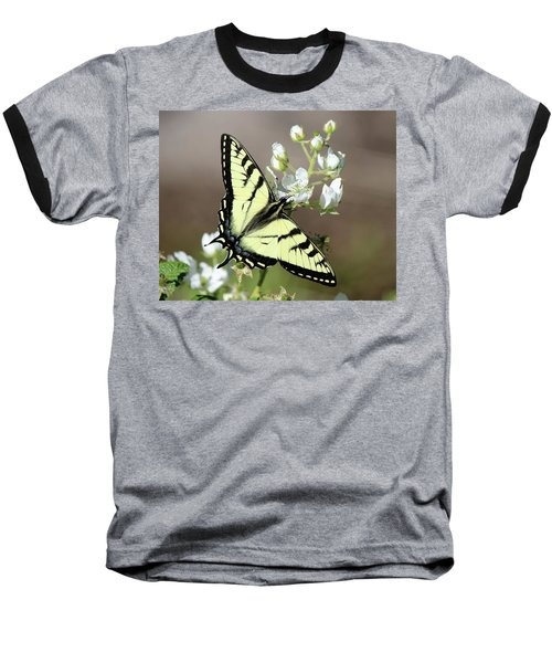 Eastern Tiger Swallowtail Female Baseball T-Shirt