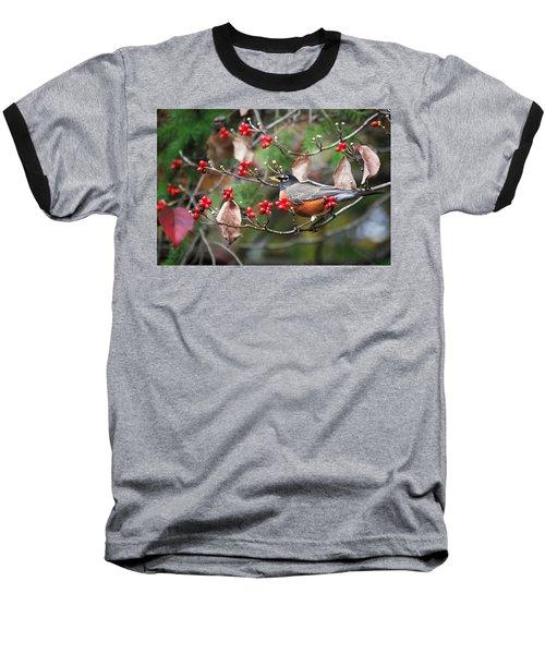 Easy Pickings Robin Baseball T-Shirt