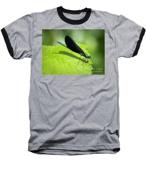 Ebony Jewelwing Baseball T-Shirt